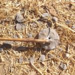 מקדח צור ואבן עם חור קדוח